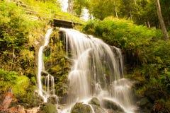 En sagavattenfall i den svarta wood Tyskland Royaltyfri Foto