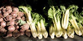 En samling av nya grönsaker inklusive rovor, rödbeta och Royaltyfria Foton