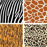 En samling av olikt djur fyra Arkivfoto