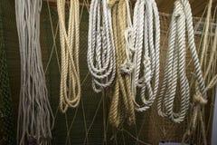 En samling av rep och kablar Fotografering för Bildbyråer