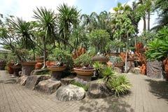 En sammansättning av krukor med tropiska blommor och stenar och träd och gräs i Nong Nooch den tropiska botaniska trädgården nära Royaltyfri Bild