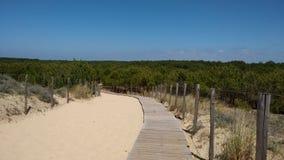 En Sandy Beach i Spanien Arkivfoton