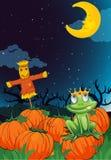 En scarecrow och en groda royaltyfri illustrationer