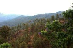 En scenisk sikt från Almora, Kumaun, Indien Arkivfoto