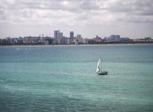 En segelbåt precis av Miami, Florida Arkivfoton