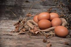 En selectivo de huevos en el paño del cáñamo imagenes de archivo