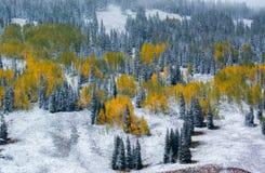 En sena Autumn Landscape Arkivbilder