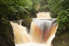 En serie av vattenfall på Ingleton, Yorkshire Arkivfoto