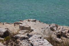 En Ses Illetes la playa y las piedras en Formentera varan Foto de archivo