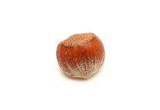En Shell Nuts image stock