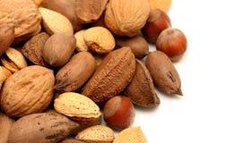 En Shell Nuts photos libres de droits