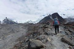 En sherpa på hans väg till ömaximumet i Chukkung, Everest baslägertrek, Nepal Arkivbilder