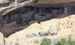 En sikt av Cliff Palace, Mesa Verde National Park Fotografering för Bildbyråer