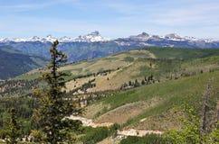 En sikt av Colorado statlig huvudväg 149 till och med Sanen Juan Mounta Royaltyfri Bild