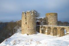 En sikt av dagen för vinter för medeltida Koporye fästning den molniga Leningrad region, Ryssland Royaltyfri Fotografi