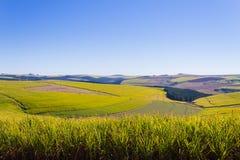 En sikt av dalen av tusen kullar nära Durban, södra Afri arkivbild