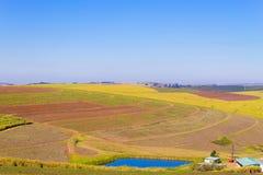 En sikt av dalen av tusen kullar nära Durban, södra Afri royaltyfri foto