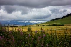 En sikt av de låga Tatra bergen Royaltyfri Bild
