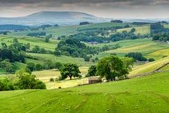 En sikt av de Yorkshire dalarna, nära Malham Royaltyfri Foto