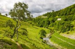 En sikt av den Smardale gälet, Cumbria Royaltyfri Fotografi