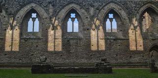 En sikt av den Tintern abbotskloster - Monmouthshire Royaltyfri Bild