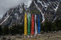 En sikt av den Yumthang dalen på det Himalayan området med klosterbroder sjunker att flyga högt, Indien Royaltyfria Bilder