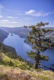 En sikt av en härlig fiord, British Columbia, Kanada Royaltyfri Foto