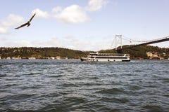 En sikt av en flygseagull och en färja som förbigår det bosporus havet i Istanbul, Turkiet Arkivbild
