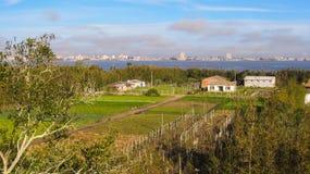 En sikt av Ilha DOS Marinheiros, med staden av Rio Grande i bakgrunden Royaltyfri Foto