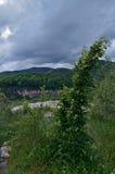 En sikt av klipporna och bergen Realistik bild Grön buske Royaltyfria Foton