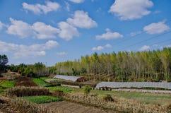 En sikt av Liaoyuan i det Jilin landskapet i Kina Royaltyfri Bild