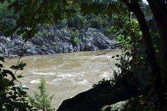 En sikt av nedgångarna på Great Falls parkerar i Virginia arkivbild