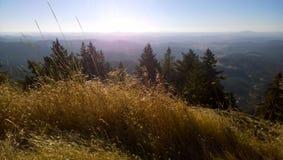 En sikt av Oregon från Butte för Spencer` s Arkivbild