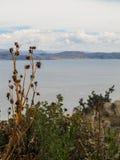 En sikt av sjön Titicaca från den Taquile ön Arkivbild