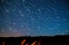 En sikt av stjärnorna av Vintergatan med träd i förgrunden Perseid meteorregn Arkivbild