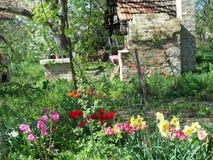 En sikt av vår trädgård i 2013 royaltyfria bilder