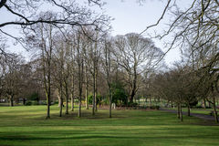 En sikt av Victoria Park under vinter, Aberdeen stad Royaltyfria Bilder