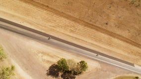 En sikt för fågelöga av en lång väg och träd lager videofilmer
