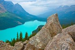 En sikt för hög höjd av Peyto sjön royaltyfria foton