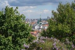 En sikt från den Bratislava slotten Royaltyfri Foto
