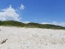 En sikt från sanden, del 2 arkivbilder