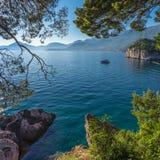 En sikt till och med träden till havet Fotografering för Bildbyråer