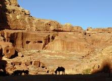 En silhouetted häst står i mitt av Petra utanför Wadi Musa Jordan royaltyfri bild
