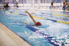 En simmareSwimming The Front Crawl In A pöl royaltyfri bild