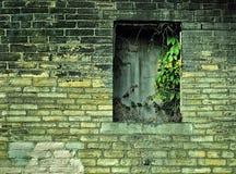 En singel steg ombord upp fönster i gamla övergav wi för en tegelstenegenskap Royaltyfri Foto