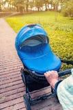 En sittvagn strosar i parkera Fotografering för Bildbyråer