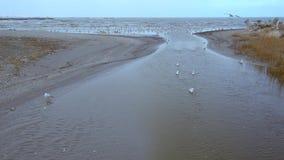En sjö häller i Blacket Sea lager videofilmer