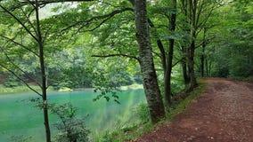 En sjö i en gömd natur Fotografering för Bildbyråer