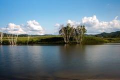 En sjö i grässlätt Arkivfoto