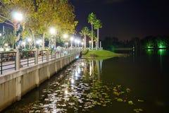 En sjö i Kissimmee Fotografering för Bildbyråer